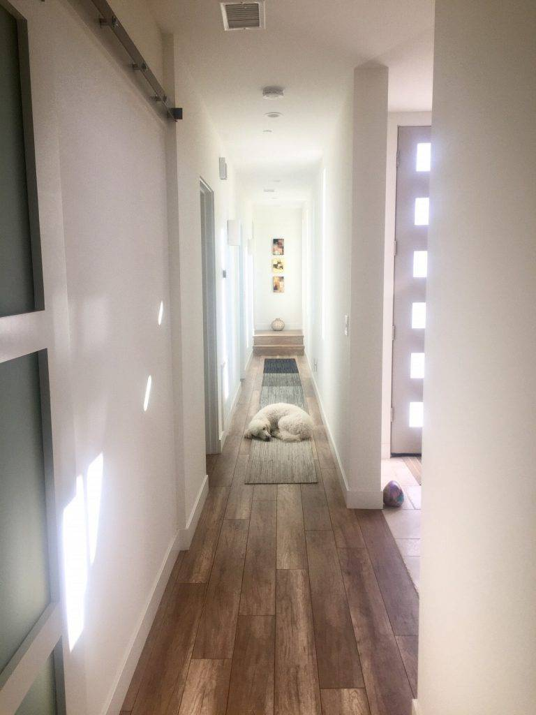 modern Hallway with Wood Floors